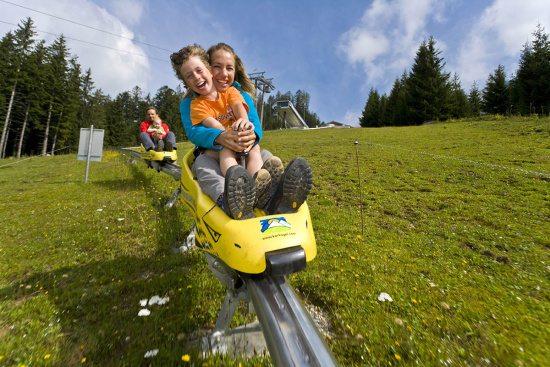 Sommerurlaub in Abtenau, Sommerrodelbahn