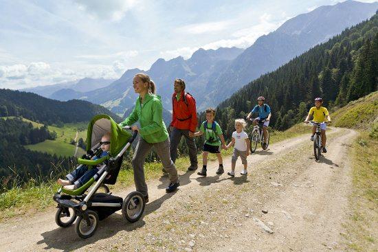 Sommerurlaub in Abtenau, Dachstein West