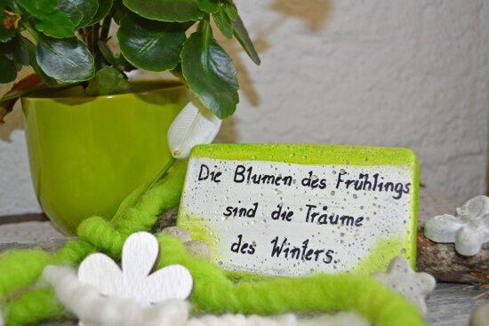 Ferienwohnung in Abtenau, Landhaus Oberlehen - Ferienwohnung für 2 - 4 Personen