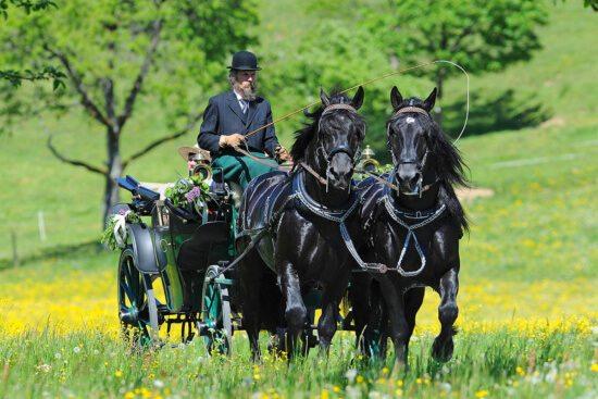 Historische Pferdekutschengala in Abtenau