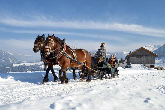 Winterurlaub in Abtenau - Landhaus Oberlehen - Pferdeschlittenfahrten
